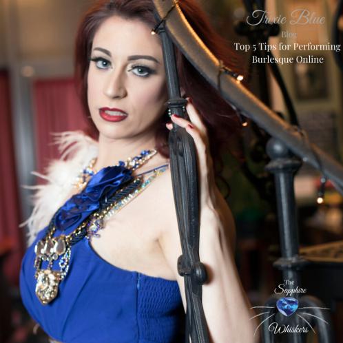 Trixie Blue Whisker Blog (1)